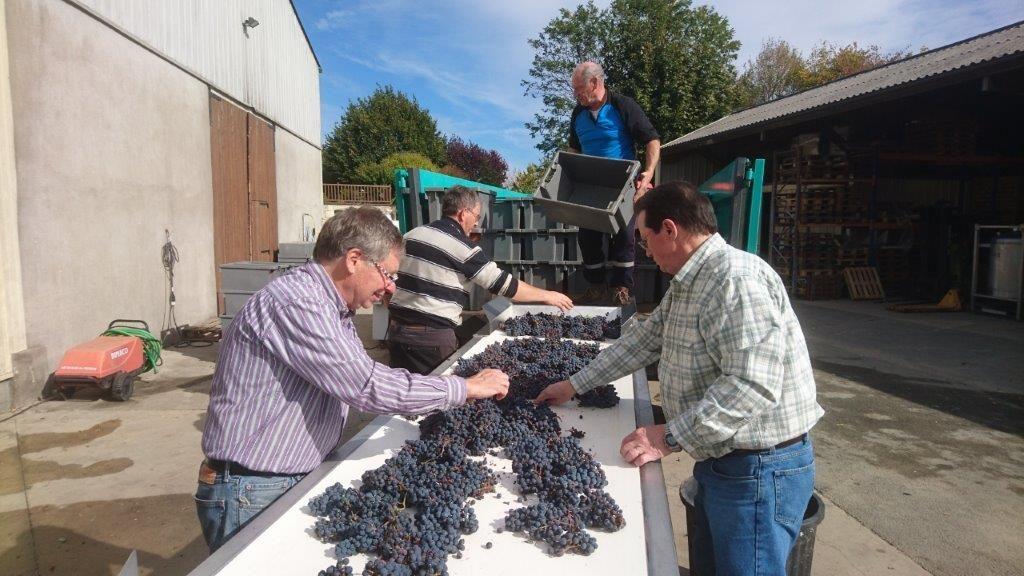 Pictures of Paul at Lambert harvest 2016